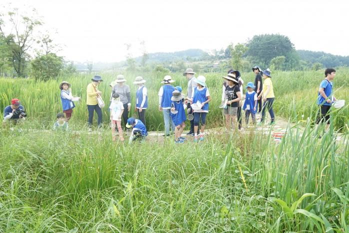 국립생태원 에코리움 앞 인공습지에서 대원들이 습지 탐사를 하고 있다. - (주)동아사이언스 제공